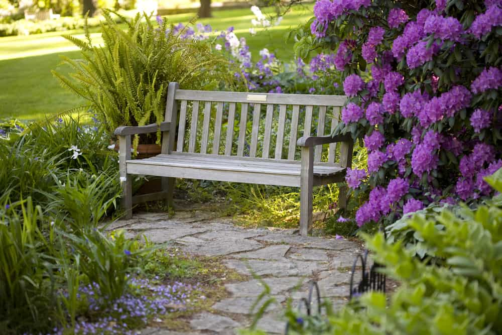 featured image showing a bench and stone path in a beautiful garden