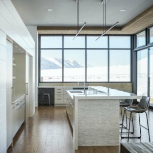 Featured image showing a well designed minimalist mid-century modern kitchen featuring Rocky Mountain Hardware cabinet pulls in white bronze brushed finish.